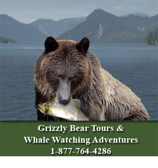 Sailicone's Grizzly Bear Lodge
