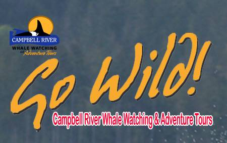 Go Wild Whale Watching Campbell River